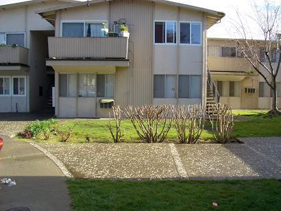 1520 Lacecy Court #2 Photo 1