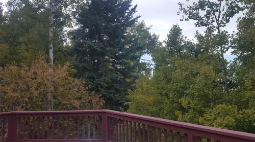 9931 City View Drive Photo 1