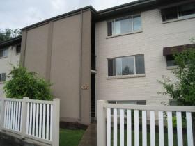 1338 E Woodland Avenue #1 Photo 1