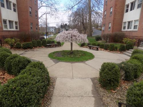 310 N Mercer Street #3 Photo 1