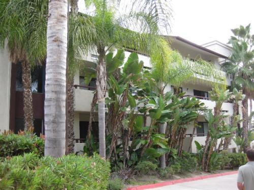 5885 El Cajon Boulevard #215 Photo 1