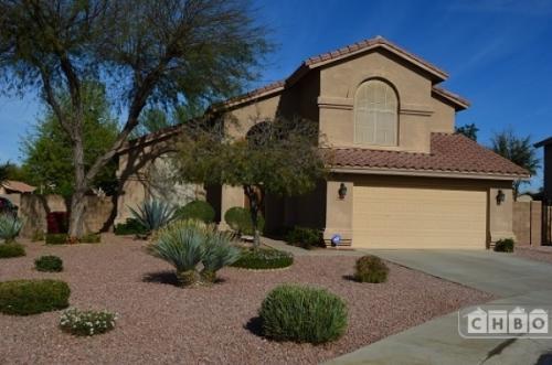 Arizona's Best Kept Secret! Photo 1
