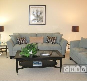 Newly Furnished-Spacious 1 BR Condo 37 Photo 1