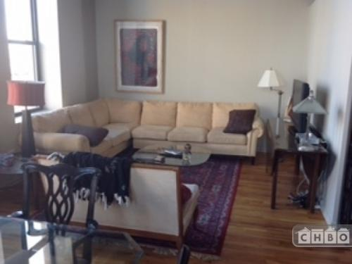 Spacious Executive Furnished West Loop l 627 Photo 1