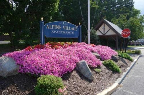 Alpine Village Photo 1