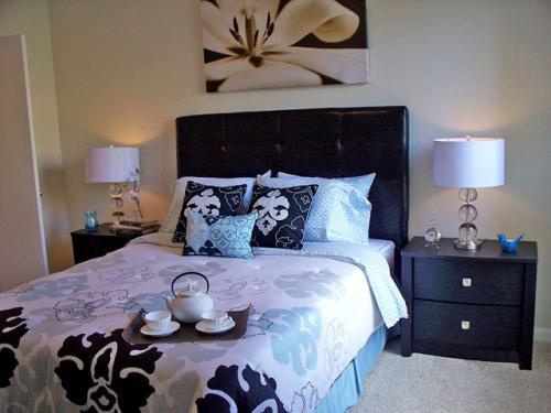 Montevista Apartment Homes Photo 1