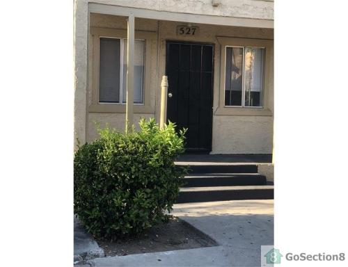 527 E 17th Street Photo 1