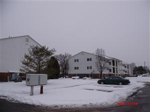 1221 Colony Lane #218 Photo 1