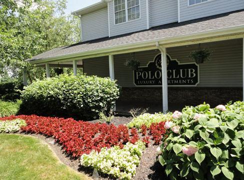 Polo Club Photo 1