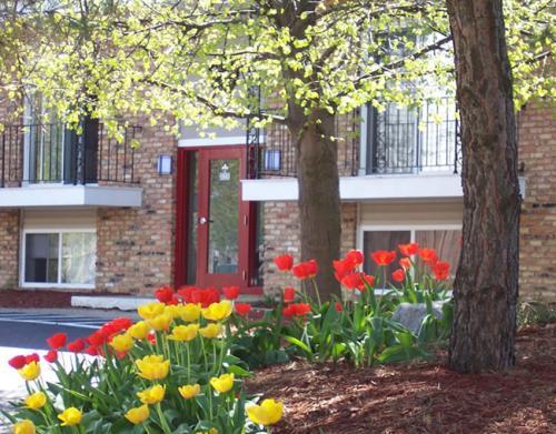 Champaign House Photo 1
