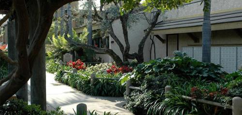 Continental Village Apartments Photo 1