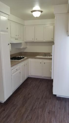 South Olive Apartment Homes Photo 1