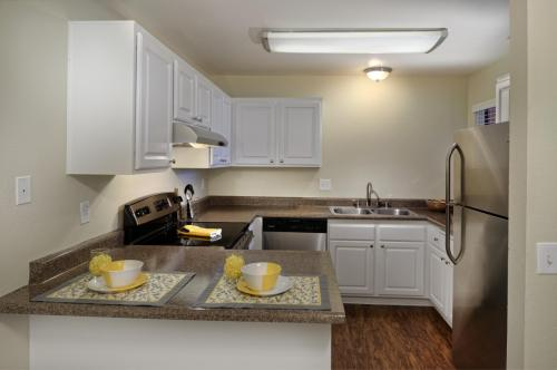 The Springs Apartments Photo 1