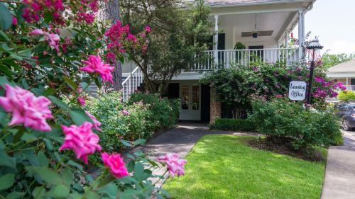 Memorial Creole Apartments Photo 1