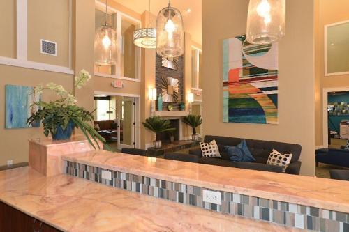 Apartments For Rent In Saint Petersburg Fl 559 Rentals