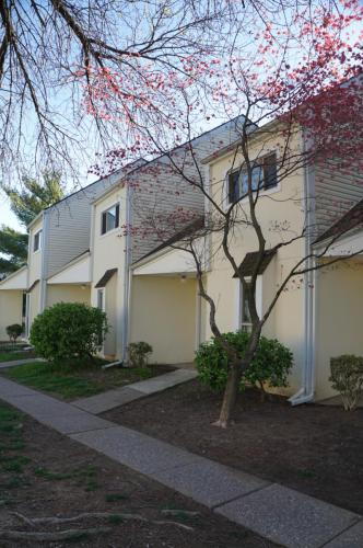 Central Park Townhomes Photo 1