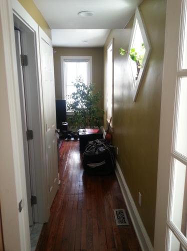 Duplex with character on tree lined street 1 Photo 1
