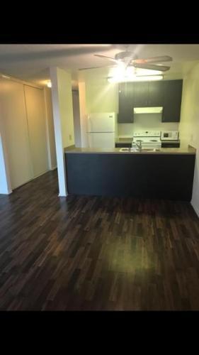 Mardette Apartments Photo 1