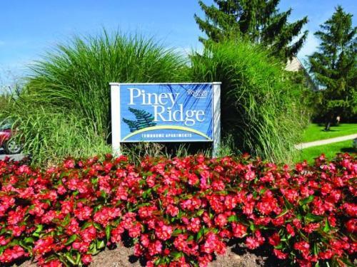 Piney Ridge Photo 1