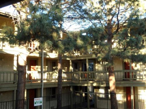 Garden Pines Photo 1