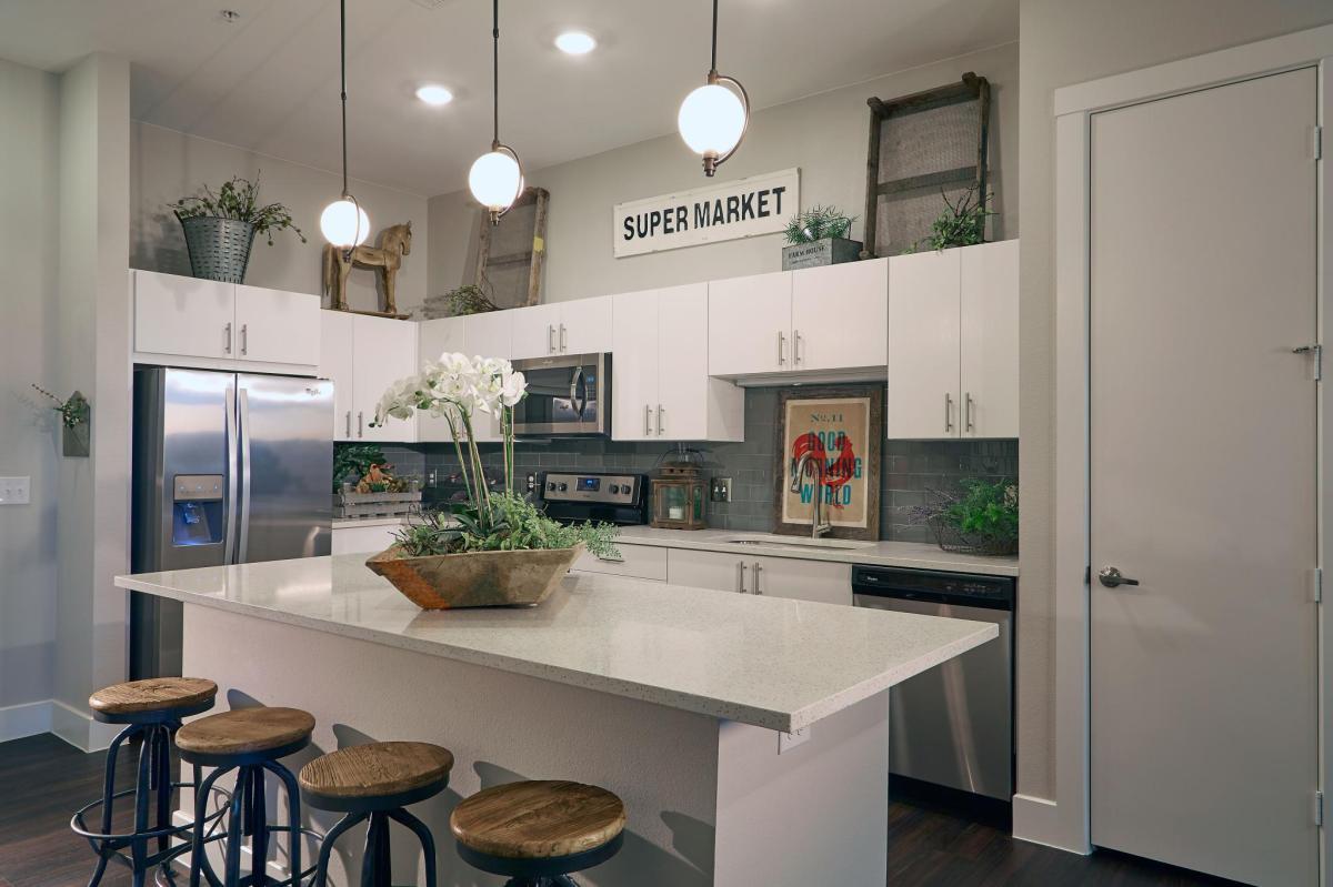 harvest lofts apartments dallas tx hotpads