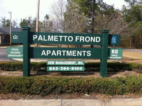 Palmetto Frond Photo 1