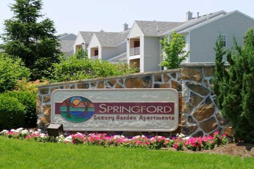 Springford Photo 1