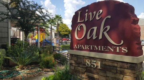 Live Oak Photo 1