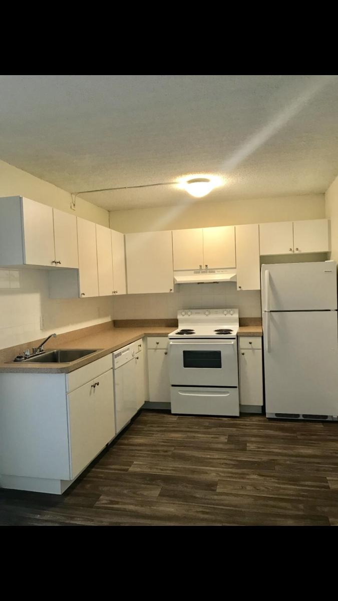 dauphine apartments tampa fl hotpads