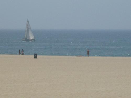 421 Ocean Front Walk #204 Photo 1