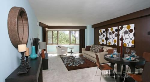 1300 N Lake Shore Drive Photo 1