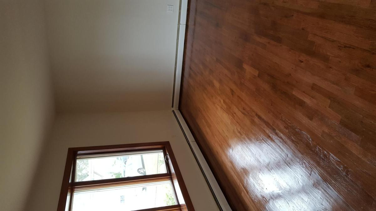 houses for rent in nassau county ny hotpads
