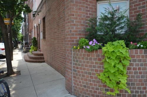 1019 S 7th Street #4F Photo 1