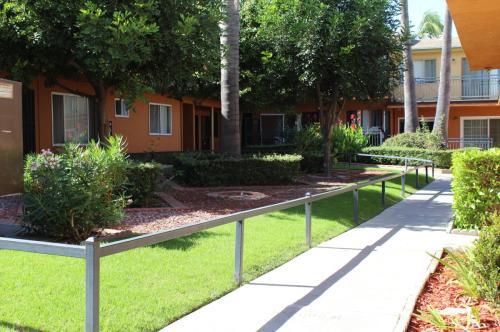 Pinafore Street Apartments Photo 1