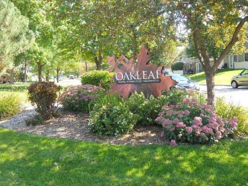 Oakleaf Photo 1