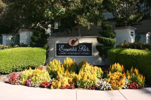 Emerald Park Luxury Apartments Photo 1
