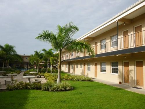 Courtyards of South Tampa Photo 1