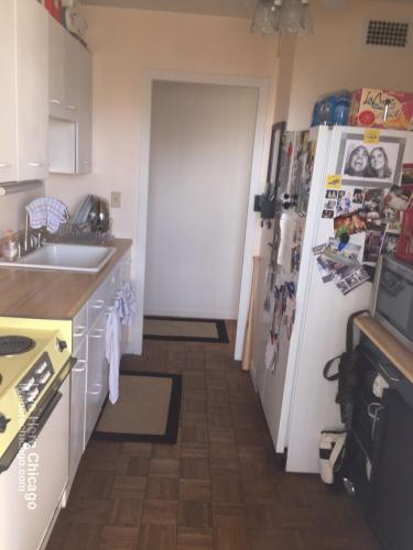 1400 N Sandburg Terrace Photo 1