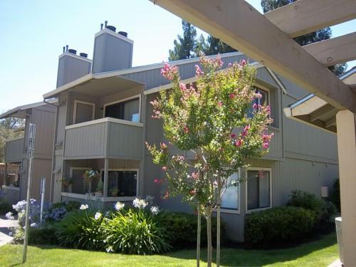 Oak Ridge Apartment Homes Photo 1
