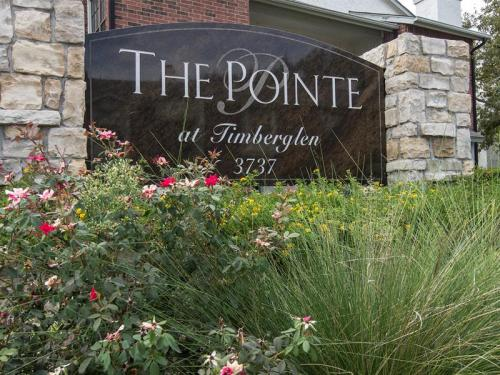 The Pointe at Timberglen Photo 1