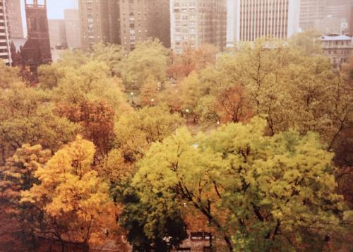 1810 Rittenhouse Square #1103 Photo 1
