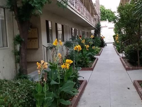 621-625 Hyde Park Boulevard Photo 1