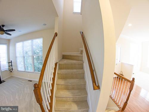 43706 Hamilton Chapel Terrace Photo 1