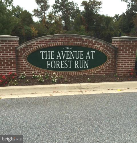 2805 Forest Run Drive Photo 1