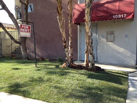 10817 White Street Photo 1