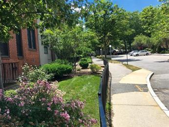 18 Juniper Street Photo 1