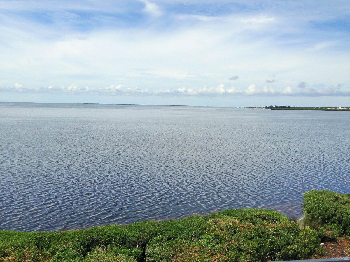 335 Mariner Drive, Tarpon Springs, FL 34689 | HotPads