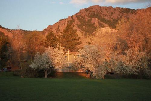 1175 Bear Mountain Drive #A Photo 1