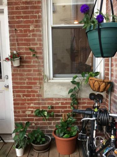 635 Fitzwater Street #2 Photo 1