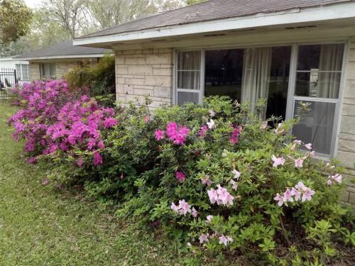 7535 Haywood Drive Photo 1